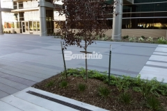 This distinctively beautiful decorative concrete hardscape was created using Bomanite Sandscape Texture and adds wonderful architectural detail that complements the adjacent building and landscape design.