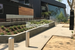 Our colleague, Bomel Construction, utilized Bomanite Sandscape Texture decorative concrete to create the pedestrian entrances and walkways around the LAFC Banc of California Stadium, and their skillful installation provided a durable hardscape surface that blends beautifully with the surrounding landscape.